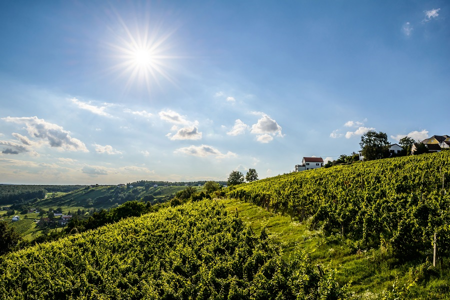 Bright sunshine and a light blue sky  - it shines above a fresh, green hilly landscape in Burgenland